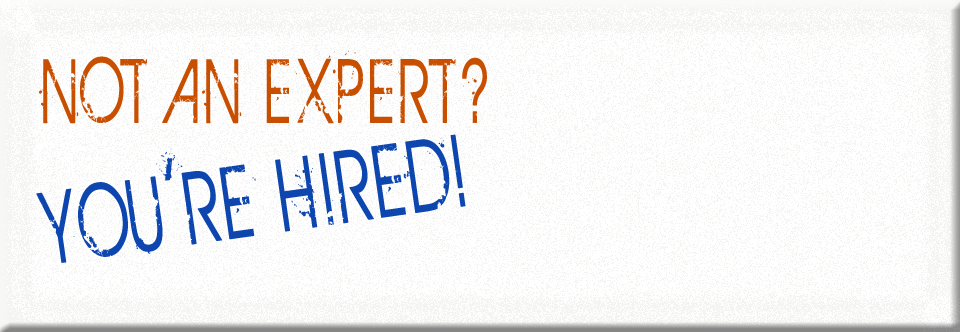 Not an Expert?  You're Hired!