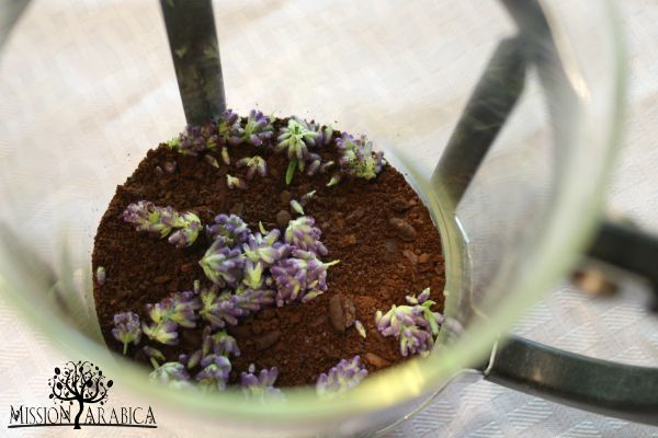 Lavender added to french press